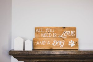 Wooden blocks that read all you need is love and a dog